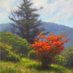 painting of flaming azalea on Roan Mountain painted by North Carolina artist Jeremy Sams