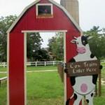 cow train photo siign
