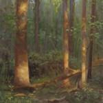 plein air painting of sun lit trees by North Carolina artist Jeremy Sams