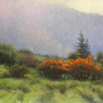 Roan Highlands Flame Azaleas