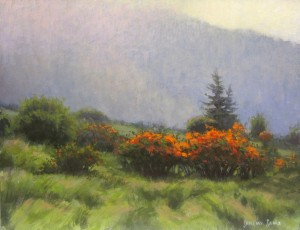 Roan Highlands Flame Azaleas