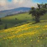 Wildflowers on Jane Bald plein air painting by North Carolina artist Jeremy Sams