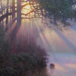 original acrylic landscape painting of sunbeams shining through trees and water by North Carolina artist Jeremy Sams