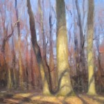 plein air painting of sunlight on trees by North carolina artist Jeremy Sams