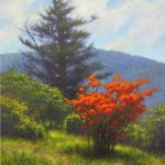 painting of flaming azalea on Roan Mountain painted by North Carolina artist Jeremy Sams