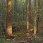 plein air painting of sun lit trees by North Carolina artist Jeremy Sams