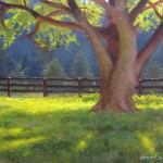 tree at hollybrook stables plein air carolina