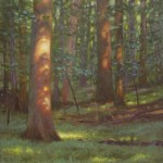 plein air painting of sunspots on trees in the forest