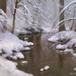 creek study plein air painting by North Carolina artist Jeremy Sams